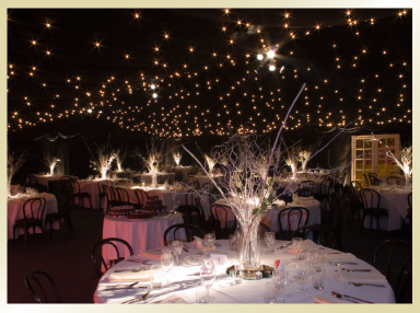 Special Touches to our Marquee Hire for weddings and parties